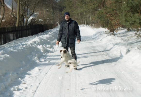 Jan Głuszczuk Grizli Olsztyn Spacer i relaks w lesie